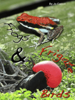 Frogs and Frigate Birds