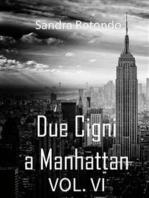 Due Cigni a Manhattan Vol VI