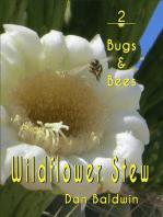 Wildflower Stew 2