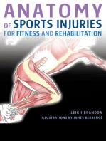 Anatomy of Sports Injuries