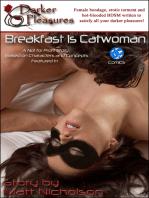 Breakfast is Catwoman
