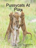 Pussycats At Play