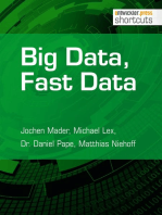Big Data, Fast Data