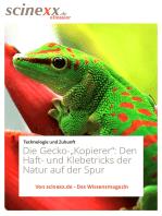 """Die Gecko-""""Kopierer"""""""