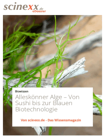 Alleskönner Alge: Von Sushi bis zur Blauen Biotechnologie