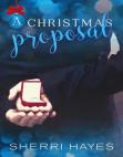 A Christmas Proposal: Hidden Threat, #2
