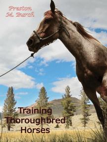 Training Thoroughbred Horses