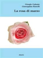 La rosa di marzo