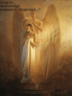 Angeli conoscerli amarli e seguirli...