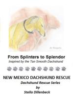 From Splinters to Splendor