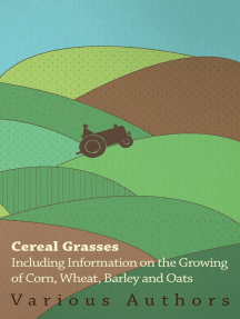 Cereal Grasses - Including Information on the Growing of Corn, Wheat, Barley and Oats