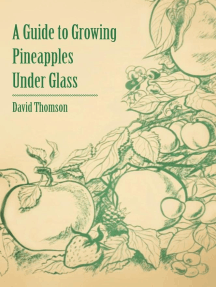 A Guide to Growing Pineapples Under Glass