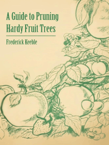 A Guide to Pruning Hardy Fruit Trees