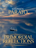 Primordial Reflections