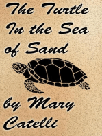 The Turtle in the Sea of Sand