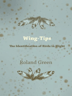 Wing-Tips - The Identification of Birds in Flight