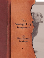 The Vintage Dog Scrapbook - The Flat Coated Retriever