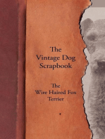The Vintage Dog Scrapbook - The Wire Haired Fox Terrier