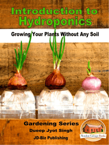 Introduction to Hydroponics: Growing Your Plants Without Any Soil