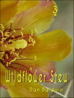 Wildflower Stew 3