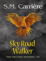 Sky Road Walker