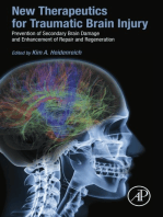 New Therapeutics for Traumatic Brain Injury