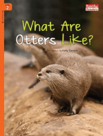 What Are Otters Like?