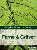 Farne & Gräser