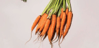 5 Simple Ways to Cut Down on Food Waste