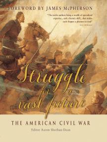 Struggle for a vast future: The American Civil War
