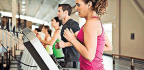How to Get a Workplace Wellness Program for Your Office