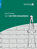 1x1 der EKG-Interpretation