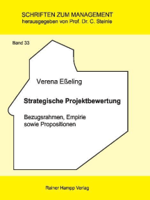 Strategische Projektbewertung: Bezugsrahmen, Empirie sowie Propositionen