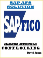 Modules Financial Accounting and Controlling In SAP AFS Solution
