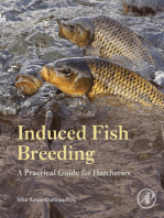 Induced Fish Breeding
