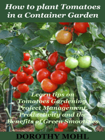 How to Plant Tomatoes in a Container Garden