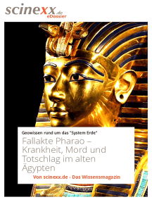 Fallakte Pharao: Krankheit, Mord und Totschlag im alten Ägypten