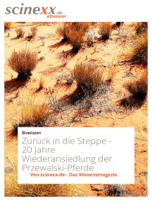Zurück in die Steppe: 20 Jahre Wiederansiedlung der Przewalski-Pferde