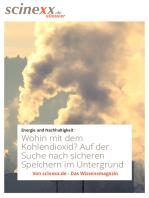 Wohin mit dem Kohlendioxid?