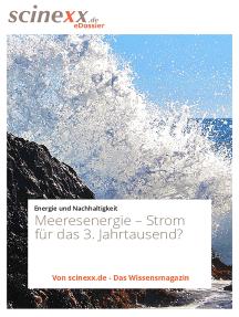 Meeresenergie: Strom für das 3. Jahrtausend?