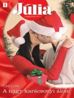 Júlia 499. (A nagy karácsonyi álom)