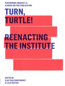 Turn, Turtle!: Reenacting The Institute