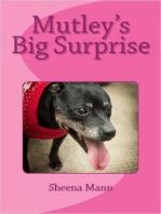 Mutley's Big Surprise: 1, #3