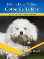 Coton de Telear