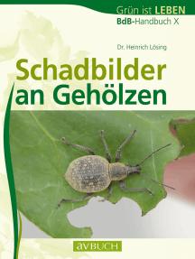 Schadbilder an Gehölzen: BdB-Handbuch X