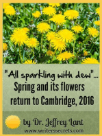 """""""All sparkling with dew""""... Spring and its flowers return to Cambridge, 2016"""
