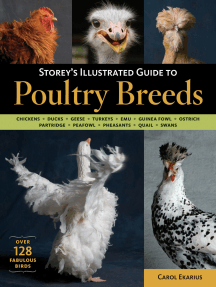 Storey's Illustrated Guide to Poultry Breeds: Chickens, Ducks, Geese, Turkeys, Emus, Guinea Fowl, Ostriches, Partridges, Peafowl, Pheasants, Quails, Swans