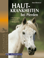 Hautkrankheiten bei Pferden