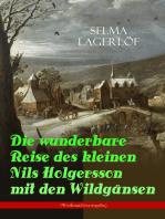 Die wunderbare Reise des kleinen Nils Holgersson mit den Wildgänsen (Weihnachtsausgabe)