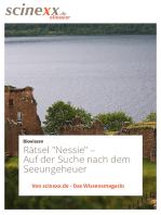 """Rätsel """"Nessie"""""""